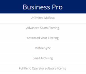 business-pro-1